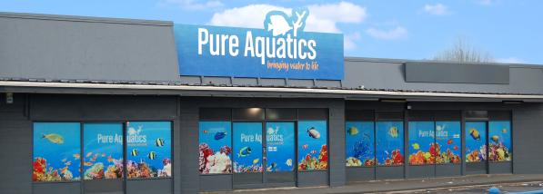 Pure Aquatics Sign writing design - Graphic Design Hamilton