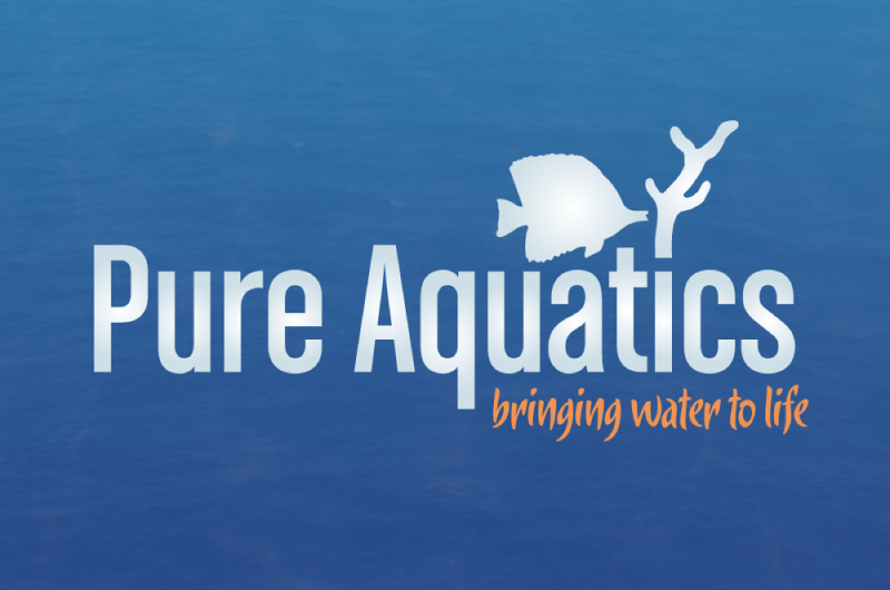 Pure Aquatics Rebranding