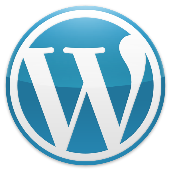 Wordpress customization services